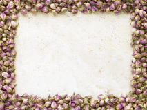 Frame Of Dried Rose Heads Royalty Free Stock Images