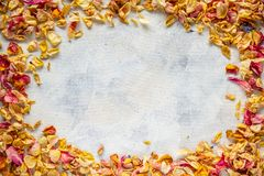 Frame of dried wild rose petals Royalty Free Stock Photo