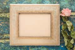 Frame with dry rose Stock Photos