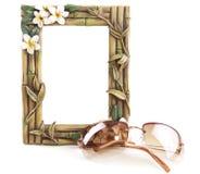 Frame e vidros de Sun tropicais Fotos de Stock Royalty Free