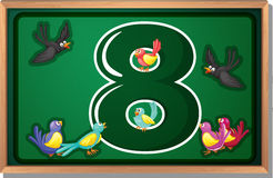 A frame with eight birds Stock Photos