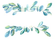 Frame of a eucalyptus branches.green floral border.White background. royalty free illustration