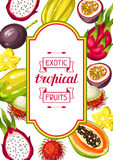 Frame with exotic tropical fruits. Illustration of asian plants Royalty Free Stock Photos