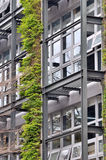 Frame exterior do edifício e da planta verde Imagem de Stock