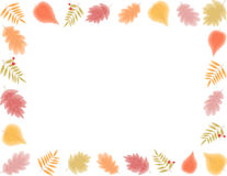 Frame of fall leaves Royalty Free Stock Photography