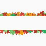Frame fallen maple leaves. Autumn background. Vector illustration. Stock Image