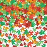 Frame fallen maple leaves. Autumn background. Vector illustration. Stock Photography