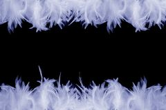 Frame of feathers. A frame made of blue feathers on black background Stock Photos