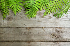 Frame from fern leaves on old unpainted wooden background with c. Opy space. Border is top. Place for text. Top view Royalty Free Stock Photo
