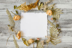 Frame with fern leaves, roses and branches on wooden background Royalty Free Stock Photography