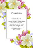Frame of a few flowers. For design of cards, invitations, greeting for birthday, wedding, party, holiday, celebration, Valentine`. S day. Vector illustration Stock Photography