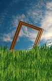 Frame in the Field. A premade background for artists to use in their artwork Stock Image