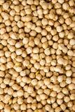 Chick peas Stock Photos