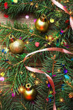 Frame of fir branches and Christmas toys Stock Photography