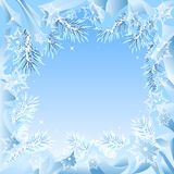 Frame of fir branches frozen Royalty Free Stock Photo