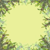 Frame with fir branches on green background stock illustration