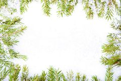 Frame of fir branches and snow Royalty Free Stock Photos