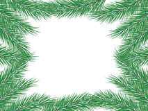 Frame of fir branches. You can enter your text. White background, vector illustration Stock Photos
