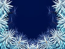 Frame with fir tree. On blue background Royalty Free Stock Images