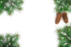 Frame of Fir tree branch with snow and cone isolated on white background with copy space for your text. Top view.  Royalty Free Stock Images