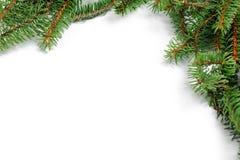 Frame of fir twigs Stock Photos
