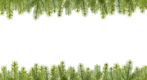 Frame from firtree branches Royalty Free Stock Photos
