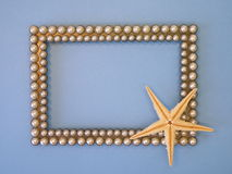 Frame and fish star Royalty Free Stock Images