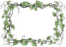 Frame floral abstrato Foto de Stock