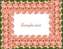 Frame floral com espaço da cópia e trajeto de grampeamento Ilustração Stock
