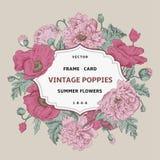 Frame floral do vintage Imagem de Stock Royalty Free