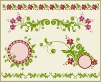 Frame floral e beira. Fotos de Stock Royalty Free