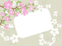 Frame on floral grunge background. White frame on floral grunge background Royalty Free Stock Photos
