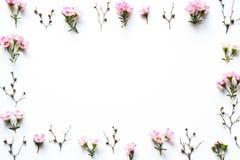 Frame floral no fundo branco Imagem de Stock