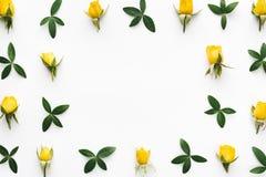 Frame floral no fundo branco Imagens de Stock