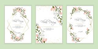 Frame on flower background. eps 10 royalty free illustration