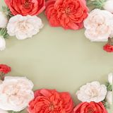 Frame from flower in pastel colors. Beautiful roses heads on mint background. Frame from flower in pastel colors. overhead view, top view. Greeting card for royalty free stock images