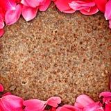 Frame of flower petal Royalty Free Stock Photo