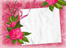 Frame with flower on the pink background. White frame with flower on the pink background Stock Photos