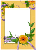 Frame with flower on the yellow background. White frame with flower and ribbons on the yellow background Stock Image