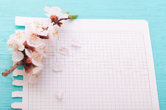 Frame with flowering branches on wooden board Stock Photography