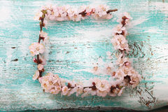 Frame with flowering branches on wooden board Stock Images