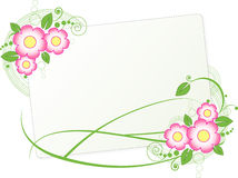 Frame with the flowers Stock Photo