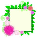 Frame with flowers Royalty Free Stock Image