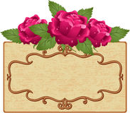 Frame and flowers Stock Image