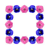 Frame of flowers. Natural decoration of flowers in form of frame Royalty Free Stock Photo