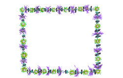 Frame it with Flowers. Hand drawn image of abstract flowers in a frame design Stock Photos