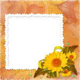 Frame with flowers on the autumn background. White frame with flowers and leaves on the autumn background Stock Image