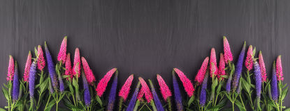 Frame of flowers, background black boards Stock Images