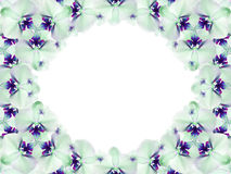 Frame of flowers. blue-green-white flowers are gathered in a circle on a white background. for design. Card for the holiday. Nature Royalty Free Stock Photography