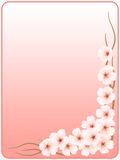 Frame_flowers of a cherry_pink. The image of colors of a cherry on a background of a gradient Vector Illustration